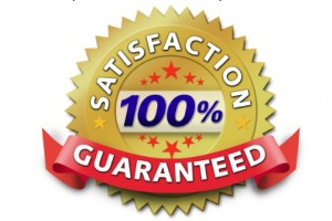 Image result for free guarantee seal